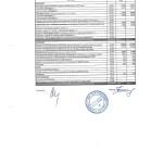 Отчет бюджет